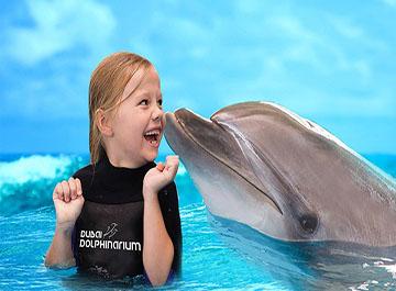 پارک دلفین های دبی